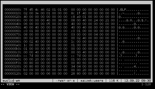 Hex-dump-screenshot.png